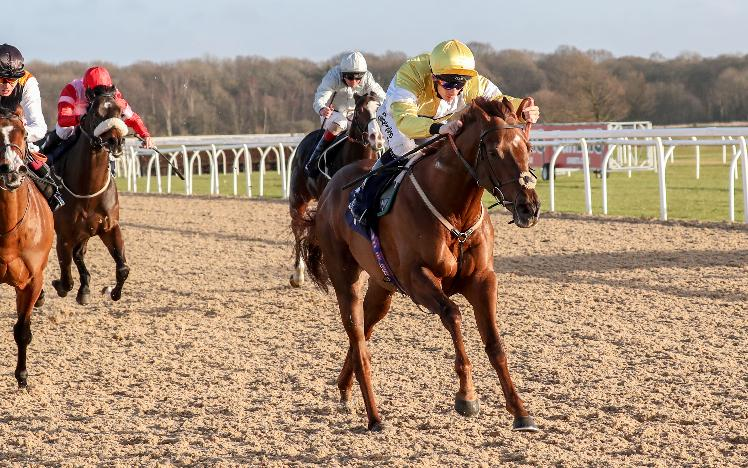 Corinthia Knight at Newcastle Racecourse