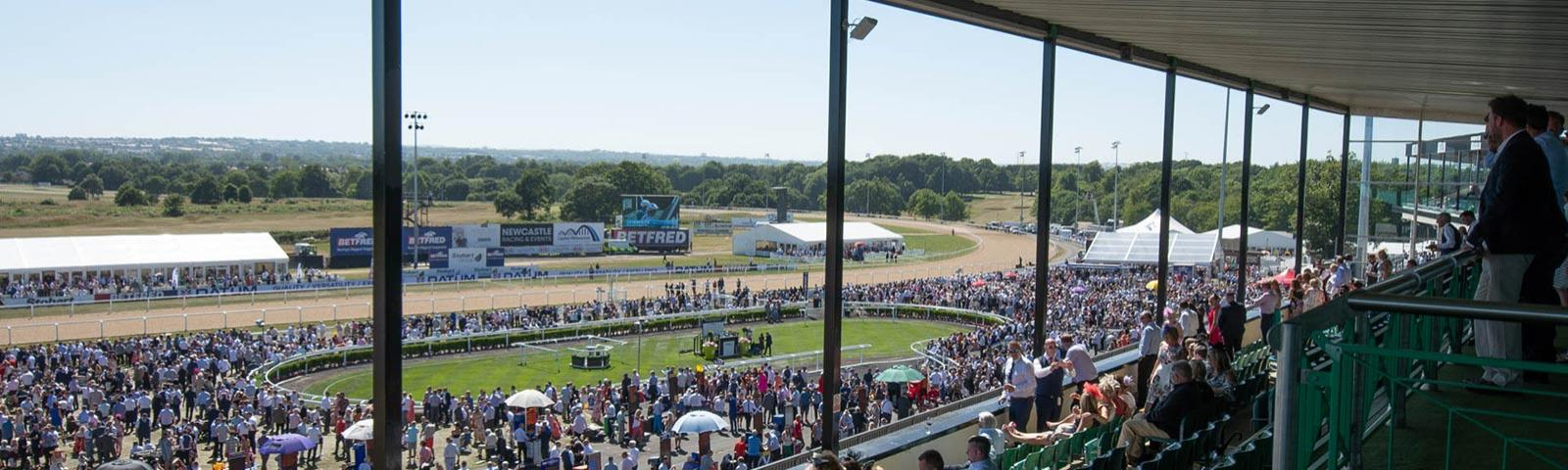 A view from the rafters of the parade ring at Newcastle Racecourse.